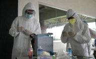Медицинские работники готовятся взять образцы мазков из носа для проверки на COVID-19. Архивное фото
