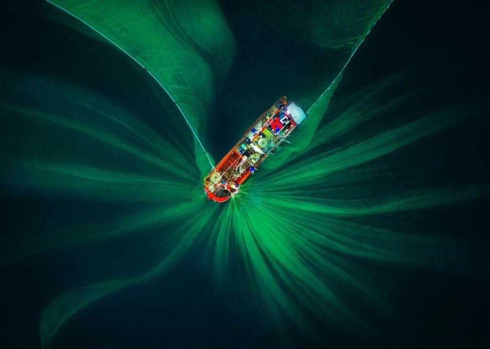 Фото Чунг Фам Хая (Trung Pham Huy) попало в список лучших в номинации  Абстракция. Оно было снято во время ловли анчоусов — обыкновенная рыболовная сеть сверху похожа на экзотический цветок.