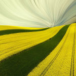 Так красиво выглядят поля, засеянные рапсом в польском регионе Ченстохова. Лукаш Райс (Lukasz Rajs) назвал фотографию Весенняя зебра, а жюри признало ее одной из лучших.