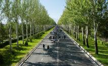 Бишкек шаарындагы веложүрүштүн катышуучулары. Архив
