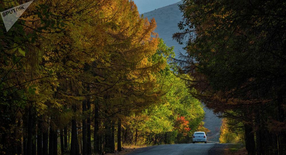 Осень в государственном природном парке Ала-Арча