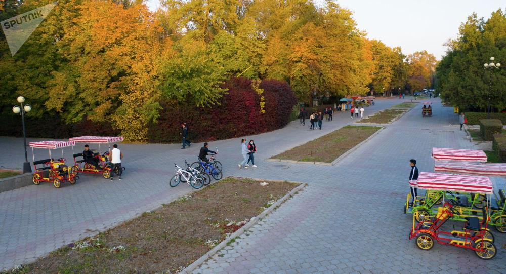 Люди гуляют по Дубовому парку в Бишкеке в осеннюю погоду. Архивное фото