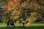 Женщина с детьми гуляет в парке. Архивное фото