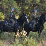 Десантников учат не только управлять лошадью, но и правильно за ней ухаживать, кормить, седлать и вьючить