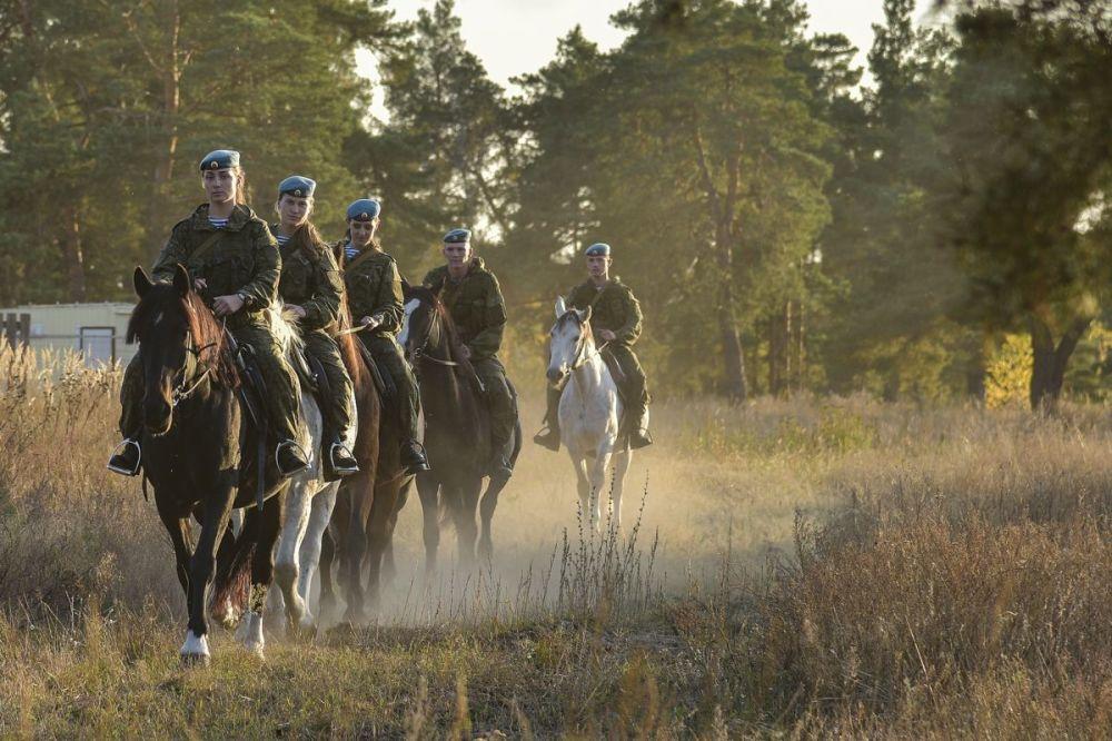 Училище имеет более чем вековую историю — 13 ноября 1918года в Рязани были сформированы Рязанские пехотные курсы