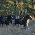 Десантники во время занятий по конной подготовке