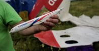Мужчина демонстрирует модель разбившегося самолета, найденную на месте крушения лайнера Boeing 777 Малайзийских авиалиний в районе села Рассыпное Донецкой области.