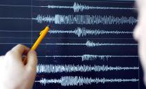 Показания магнитуды землетрясения на сейсмографе. Иллюстративное фото