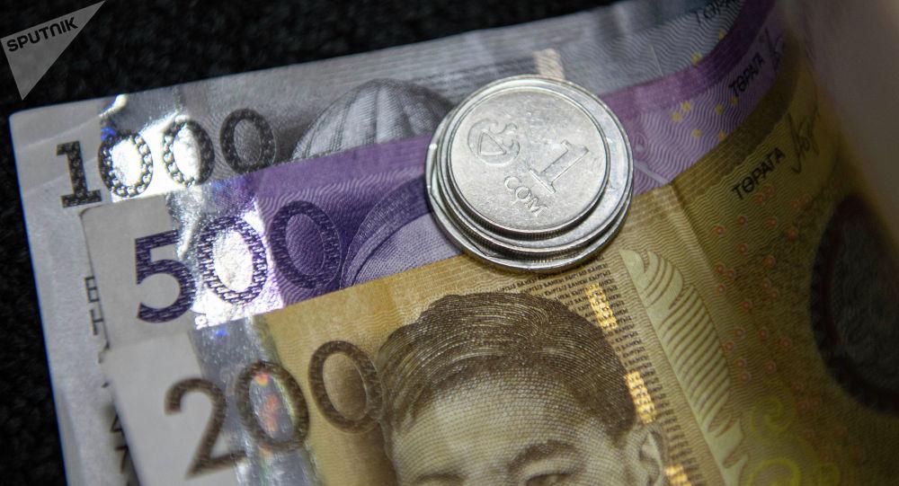 Сом банкноталардын үстүндө монеталар. Иллюстративдик сүрөт