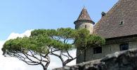 Башня замка. Архивное фото