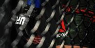 Перчатки UFC. Архивное фото