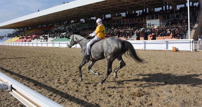 Участники конных скачек на ипподроме Чолпон-Аты, приуроченных ко Дню независимости