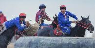 Всадники команд Ынтымак и Достук во время финала высшей лиги турнира по кок бору на ипподроме в Чолпон-Ате
