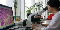 Лаборант проводит цитологическое исследование. Архивное фото