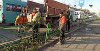 Работники муниципальной службы Тазалык возвращают ограждения