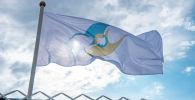 Флаг с символикой Евразийского экономического союза (ЕАЭС). Архивное фото
