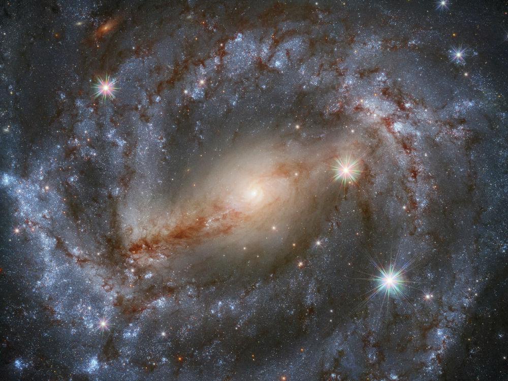 Хаббл телескобу Карышкыр топ жылдызындагы NGC 5643 спираль галактикасын тартып алган. Ал туташуучу (SBc) өзгөчөлүгү менен кызыктуу.