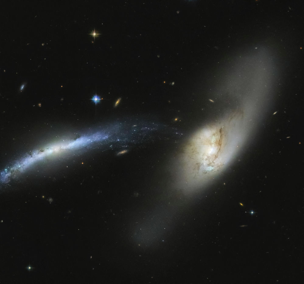 Хаббл космостук телескобу менен тартылган Lynx топ жылдызындагы NGC 2799 галактикасы
