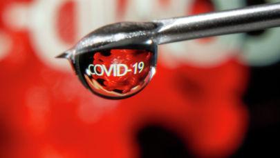 COVID-19 вирусу. Архивдик сүрөт