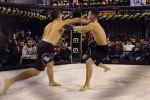 Всего в турнире принимали участие 22 кыргызстанских бойца. 17 из них одержали победы — 9 нокаутом, 5 — удушающим приемом, а также три — решением судей.
