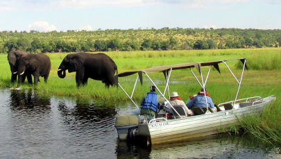 Туристы на речных сафари-лодках наблюдают за слонами на берегу реки недалеко от Намибии. Архивное фото