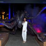 Аня Чалотра на Netflix The Witcher LA Fan Experience