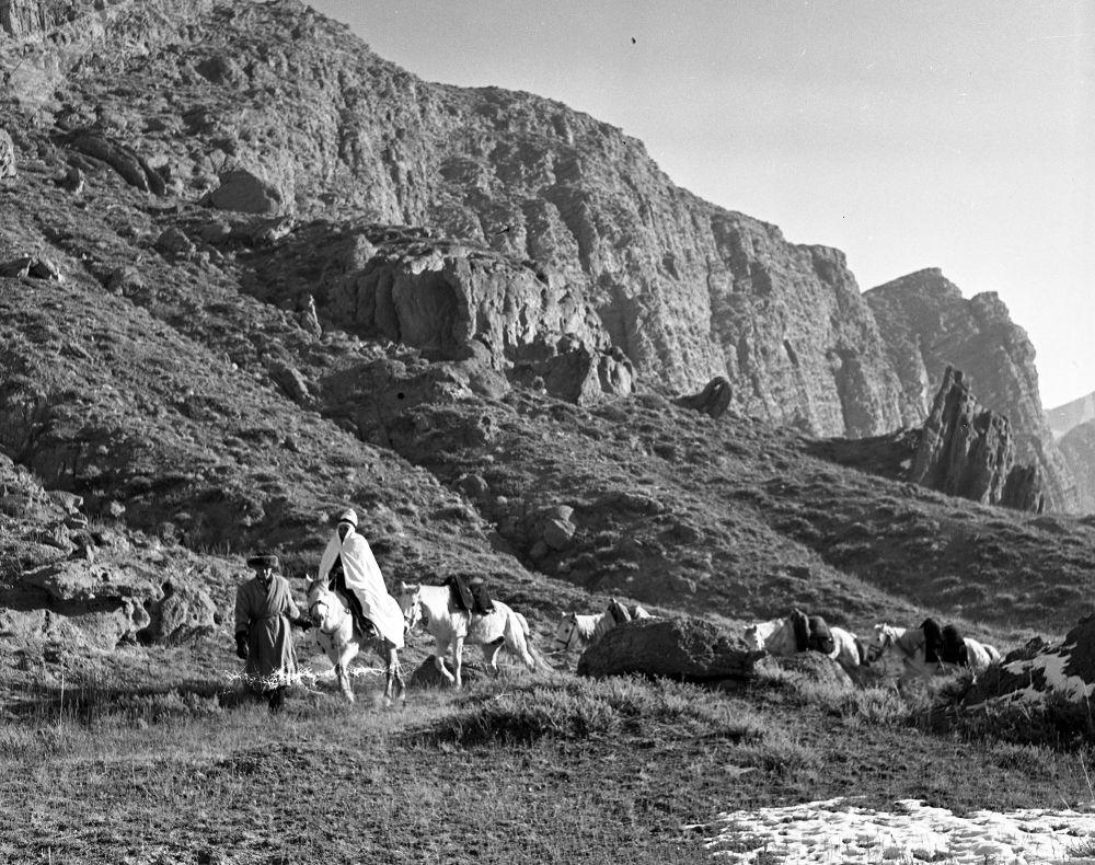 Тасманын басымдуу бөлүгү Ысык-Көл облусунда тартылган