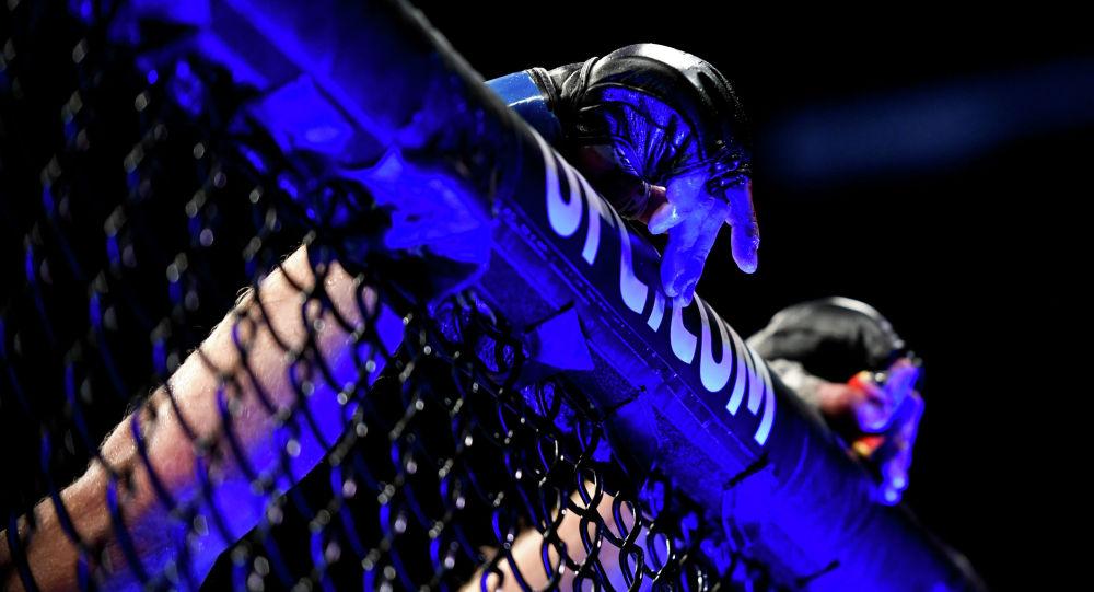 Боец UFC. Архивное фото