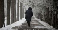 Женщина идет по аллее вдоль проспекта Чингиза Айтматова в период аномальных холодов в Бишкеке. Архивное фото