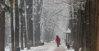 Девушка идет по аллее проспекта Эркиндик в период аномальных холодов в Бишкеке