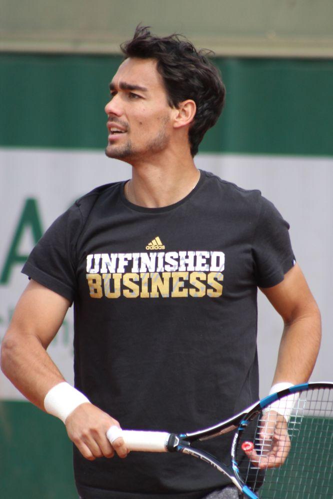 Фабио Фоньини, италиялык теннисчи