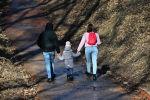 Семья гуляет в парке. Архивное фото