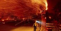Калифорниядагы Сильверадо аймагында тилсиз жоо менен кармашып жүргөн өрт өчүрүүчү