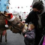 Двухлетняя София Фокс уткнулась носом в осла в шляпе Санты на торговой улице на фоне распространения пандемии коронавируса (COVID-19) в Голуэе. Ирландия, 22 декабря 2020 года