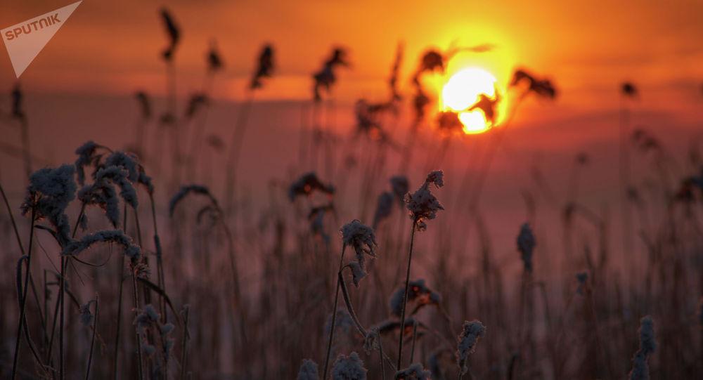 Зимний закат. Архивное фото
