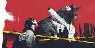 Истинная причина авиакатастрофы в Дача СУ