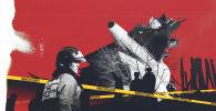 Дача-СУдагы авиакырсыктын анык себеби