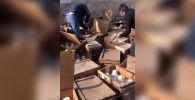 В Оше выявили крупную партию жидкого вещества, предназначенного для изготовления наркотиков, сообщила пресс-служба Госкомитета национальной безопасности КР.