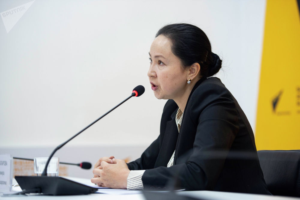 Председатель правления ОАО ГИК Элмира Абжапарова на брифинге в пресс-центре Sputnik Кыргызстан.