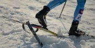 Лыжачы. Архив