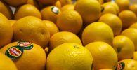 Апельсины. Архивное фото