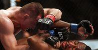 Мэраб Двалишвили и Террион Вэйер во время боя на турнире UFC в России. Архивное фото
