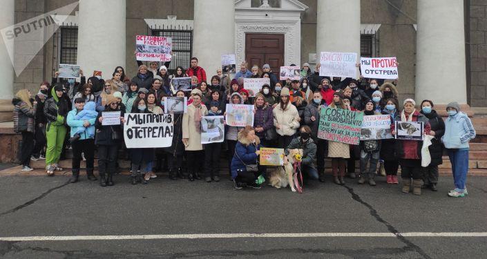 У мэрии Бишкека проходит запланированный митинг активистов, выступающих против отстрела собак в столице