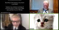 Адвокат из Техаса Род Понтон попал в курьезную ситуацию, появившись на онлайн-заседании суда в Zoom в виртуальной маске котенка.