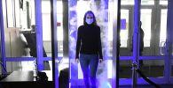 Девушка проходит дезинфицирующую арку. Архивное фото