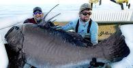 В США два профессиональных рыболова поймали гигантского варшавского черного окуня. Его длина оказалась больше человеческого роста.