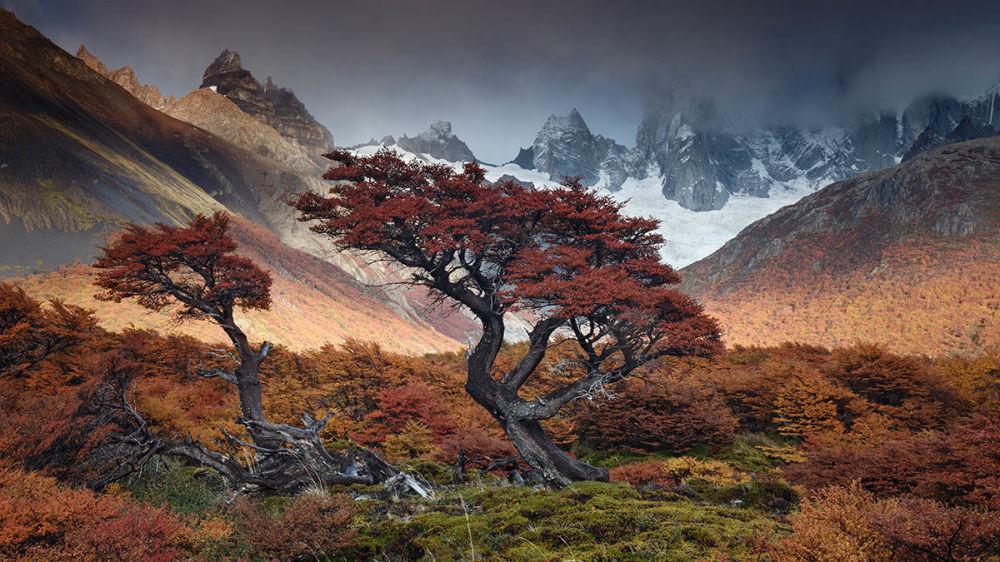 Фото Туманы времени аргентинца Андрэ Поззи вошло в список высоко оцененных в категории Дышащие пространства