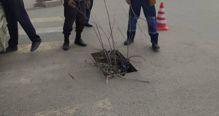 Сотрудники МП Бишкекасфальтсервис закрывают все открытый люк в Бишкеке