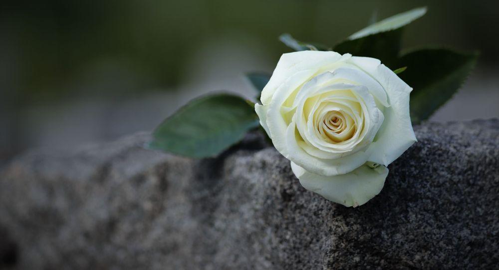 Роза на надгробии на кладбище. Иллюстративное фото