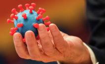 Модель коронавируса SARS-CoV-2. Архивное фото